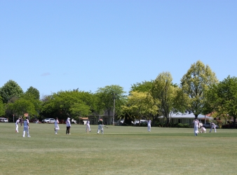Hamilton Cricket Association long term strategy