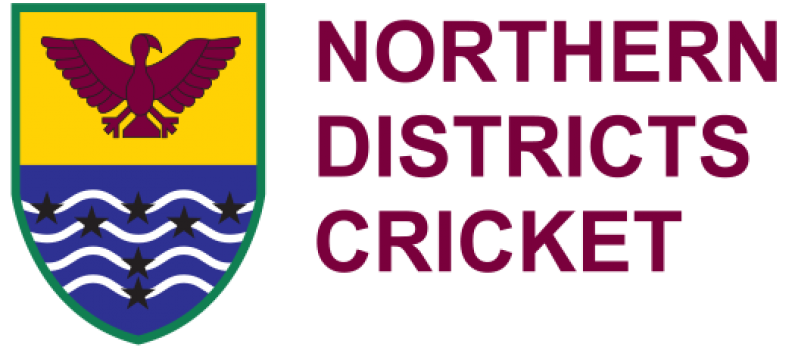 Northern Districts Job Vacancy – CEO